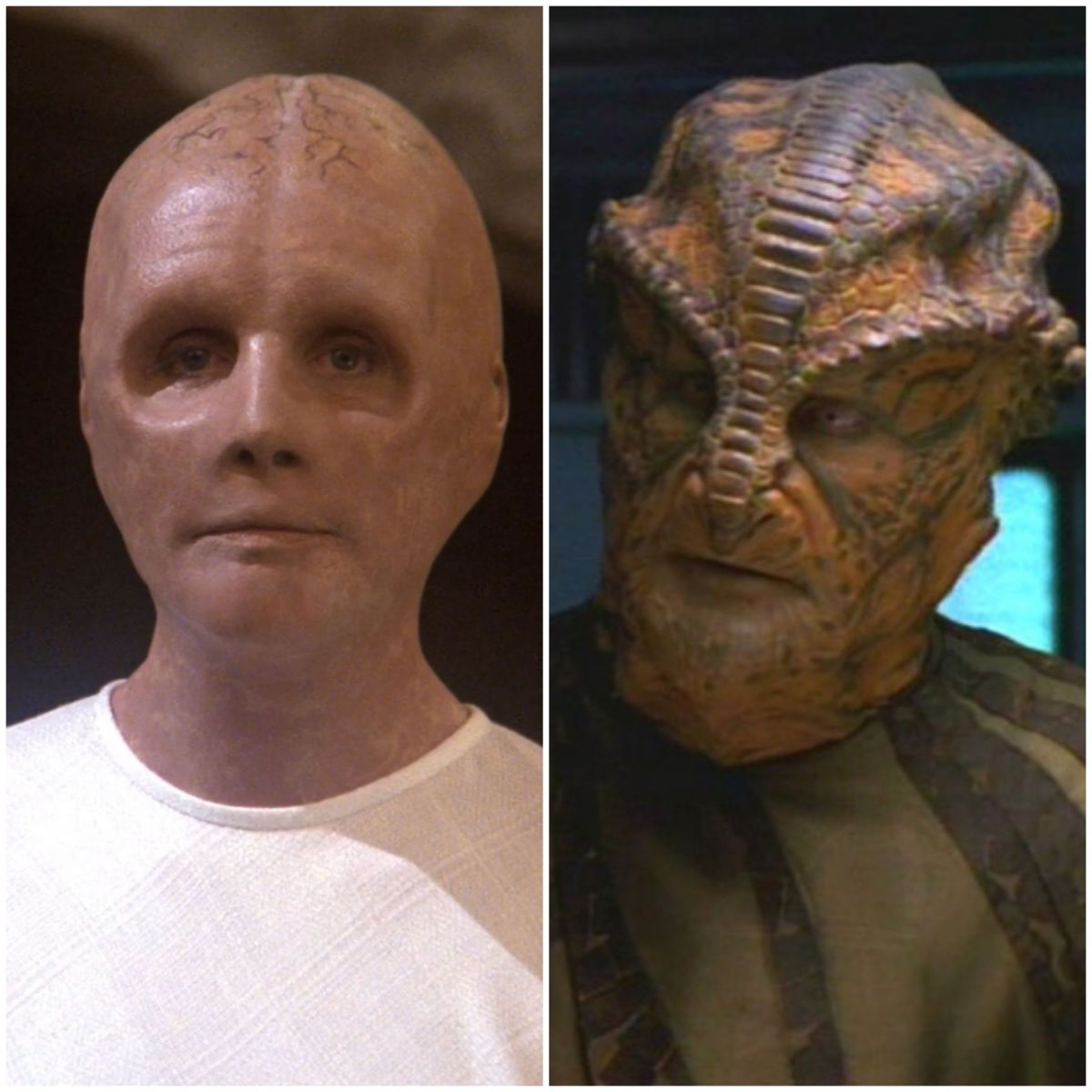 Star Trek: HumanoidOrigins